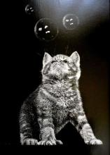 Cats play with soap bubbles!